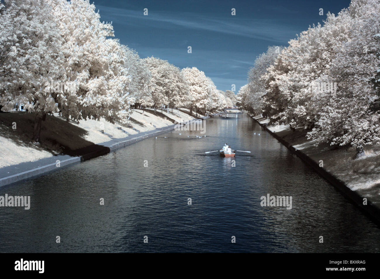 looking along the Royal Military Canal, Hythe, photo taken with an Infra-red camera & channel-swapped. - Stock Image