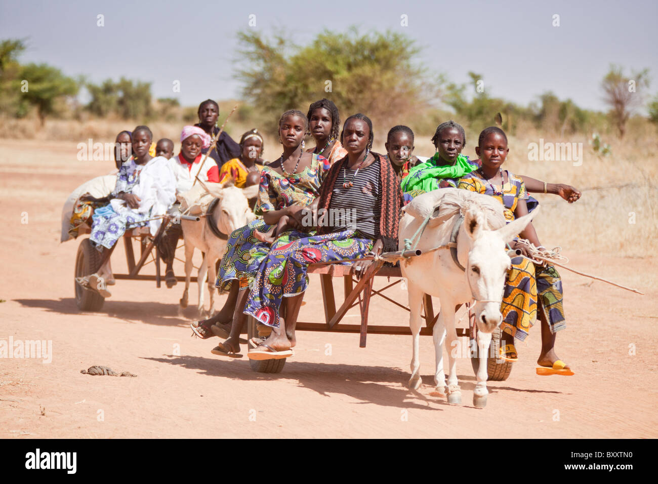 A group of Tuareg women ride a donkey cart to the Bourro market in northern Burkina Faso. - Stock Image
