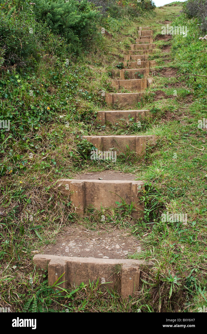 hillside steps on a countryside footpath - Stock Image