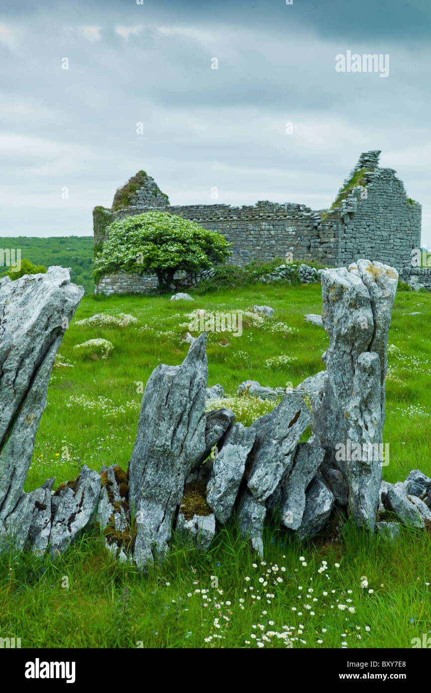 Historic site medieval village ruins and 15th Century Carron Church with graveyard, County Clare, West of Ireland - Stock Image