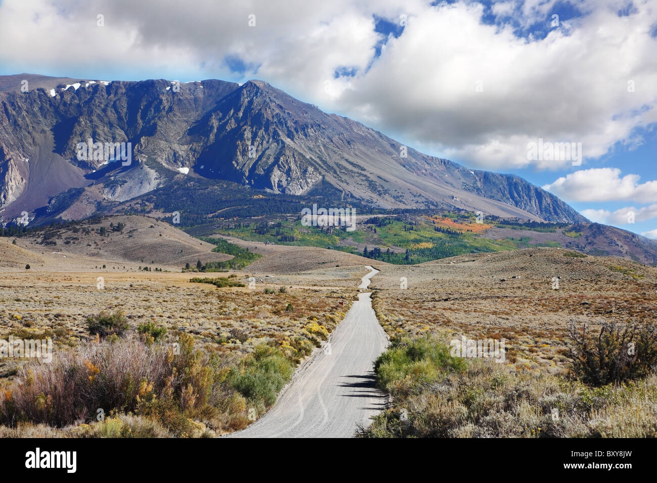 The narrow asphalt road in the picturesque blooming steppe to the distant mountains - Stock Image