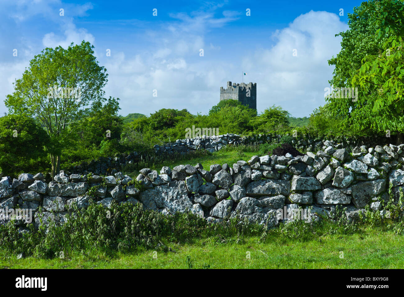 Castle of Dysert O'Dea, 15th Century tower house, near Corofin in County Clare, West of Ireland - Stock Image