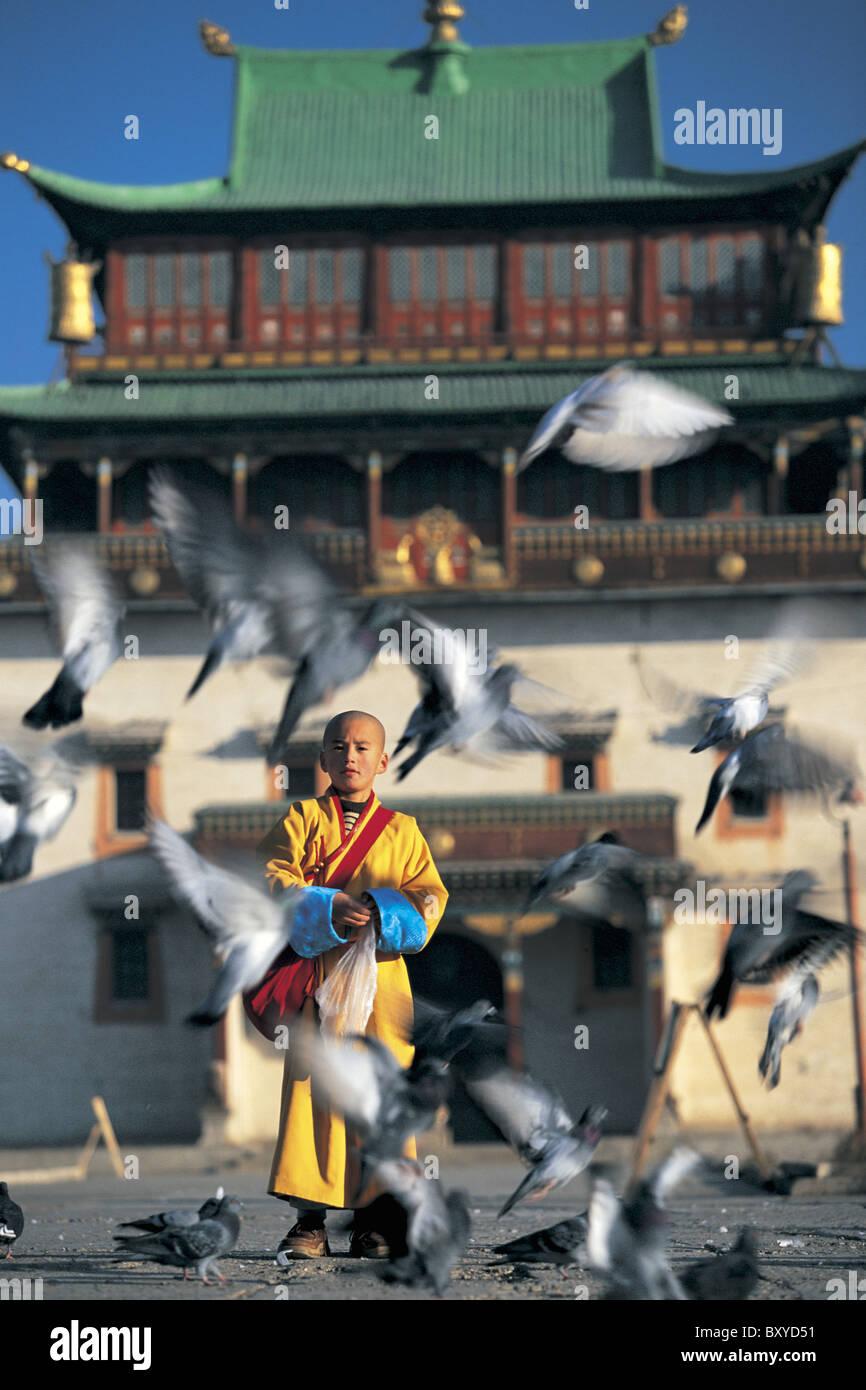 Monk feeding birds, Gandan Khiid Monastery, Ulann Baatar, Mongolia - Stock Image