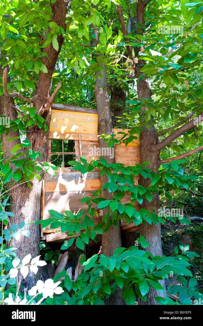 Tree house - Stock Image