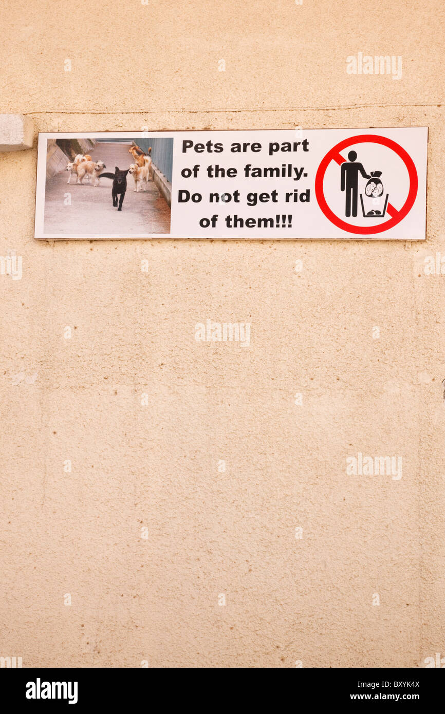 Animal welfare charity poster on the wall of a building, Limassol, Cyprus. - Stock Image