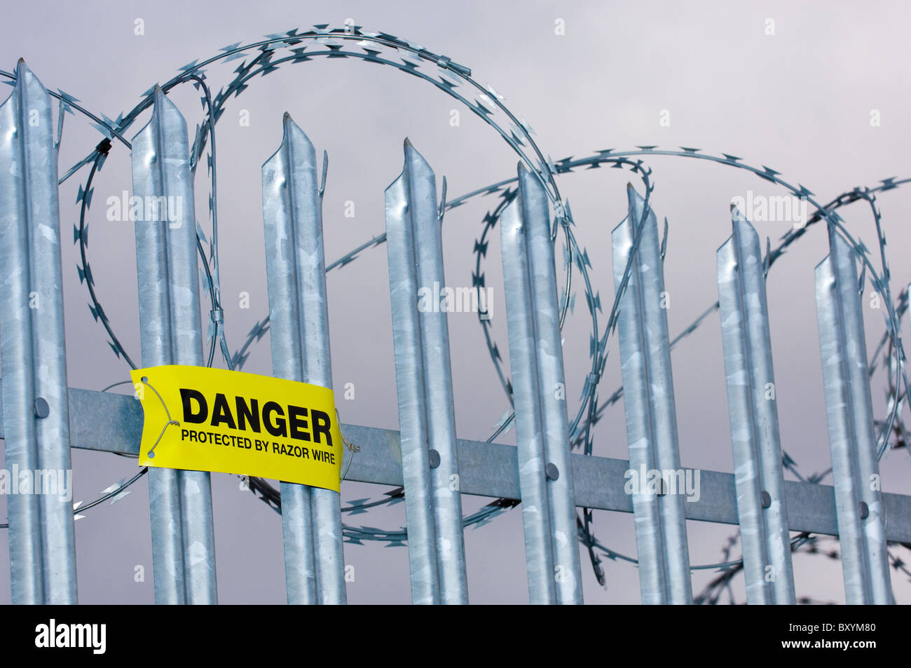 Danger sign warning of concertina razor wire mounted onto galvanized steel  pointed fence. - Stock Image