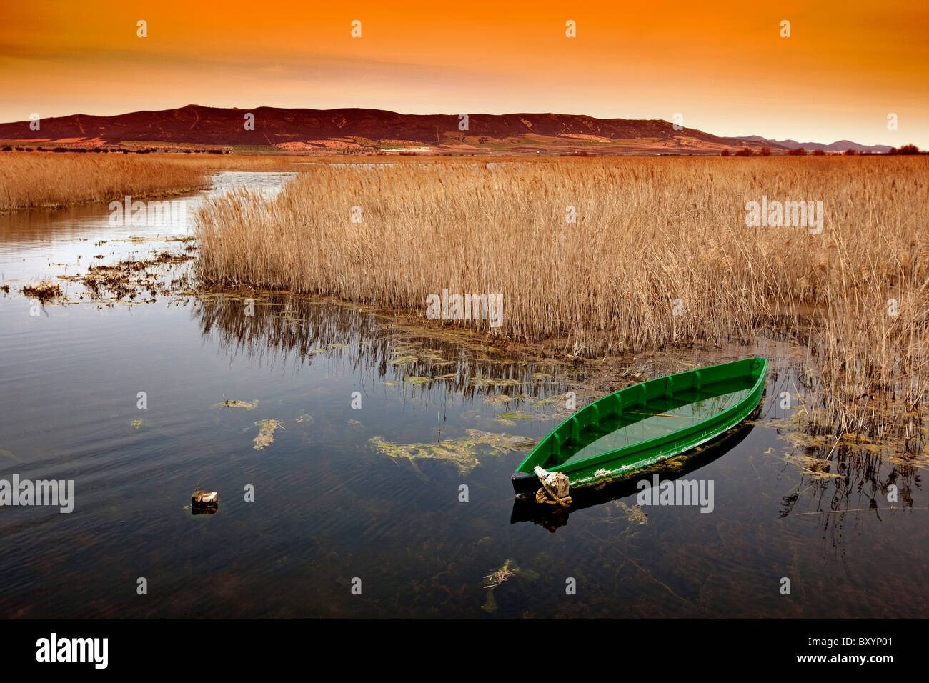 Barca en el Parque Nacional de Las Tablas de Daimiel Ciudad Real Castilla La Mancha España boat National Park Spain Stock Photo