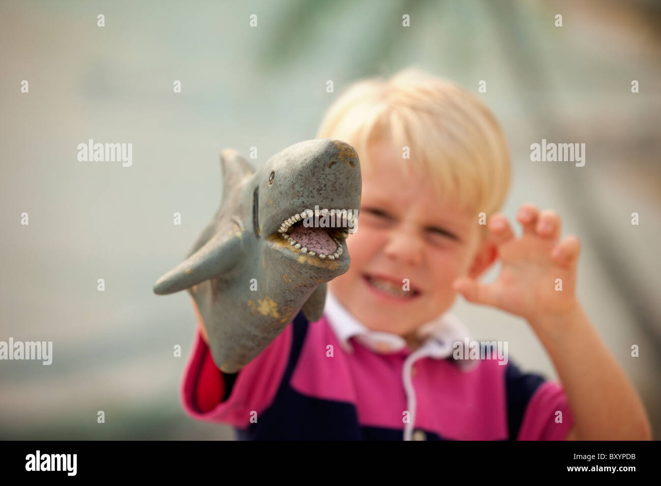 Young boy with shark puppet - Stock Image