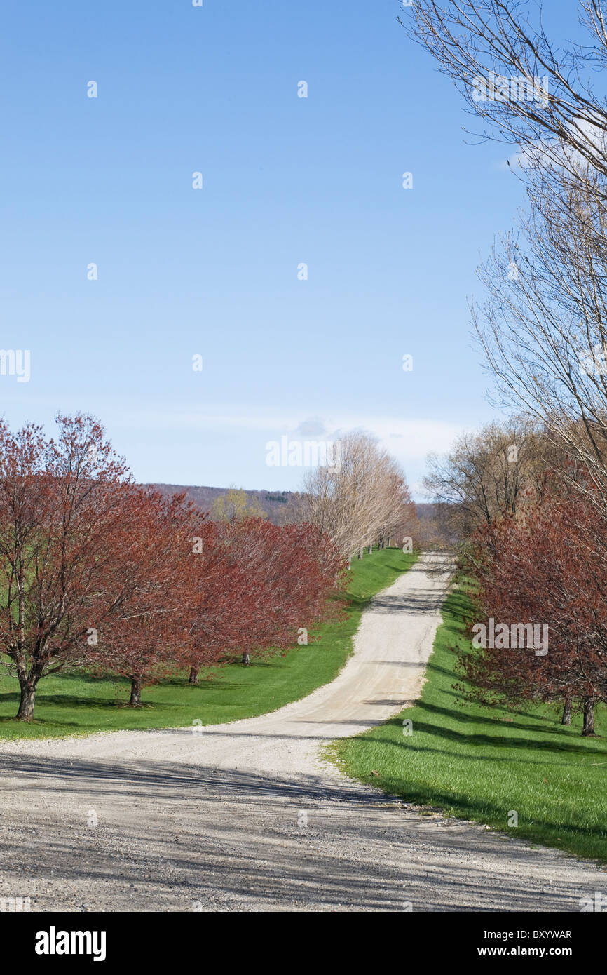 A gravel road leads over a hill in the New England countryside in early spring. - Stock Image