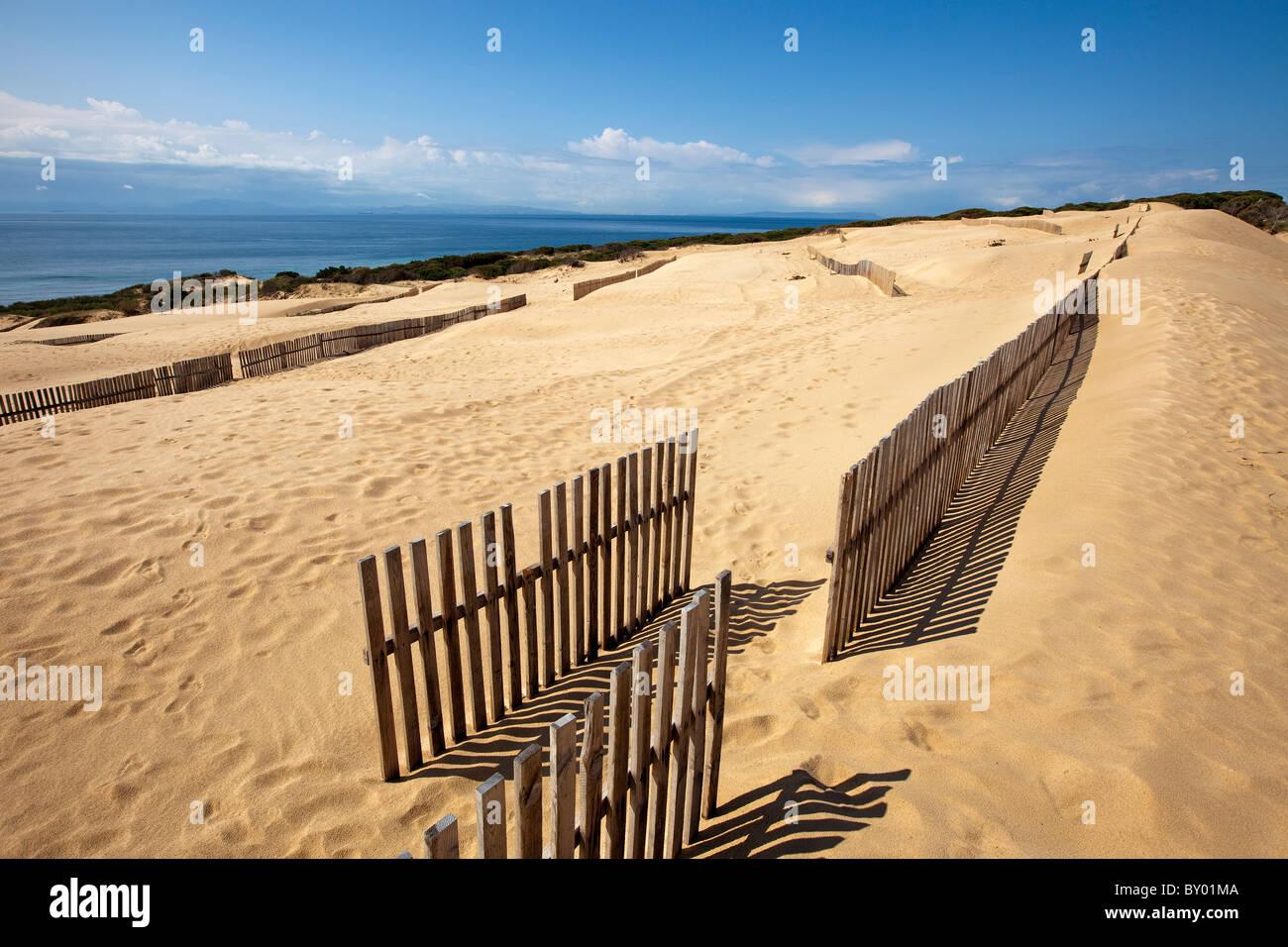 Dunas Playa Punta Paloma Tarifa Cádiz Andalucía España Dunes Beach Punta Paloma Spain Andalucía - Stock Image