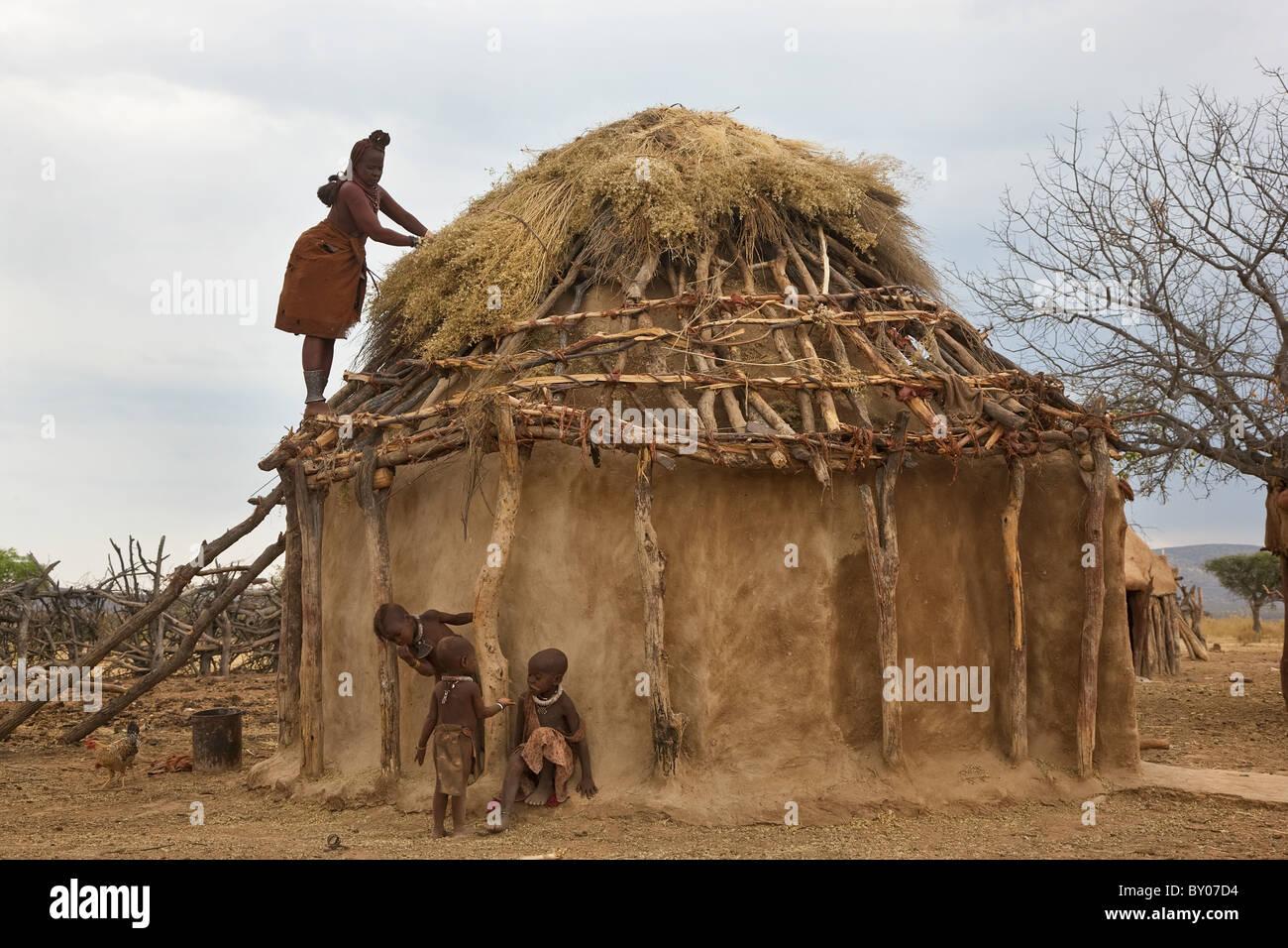 Thatching Himba tribe hut, Kaokoland, Namibia - Stock Image