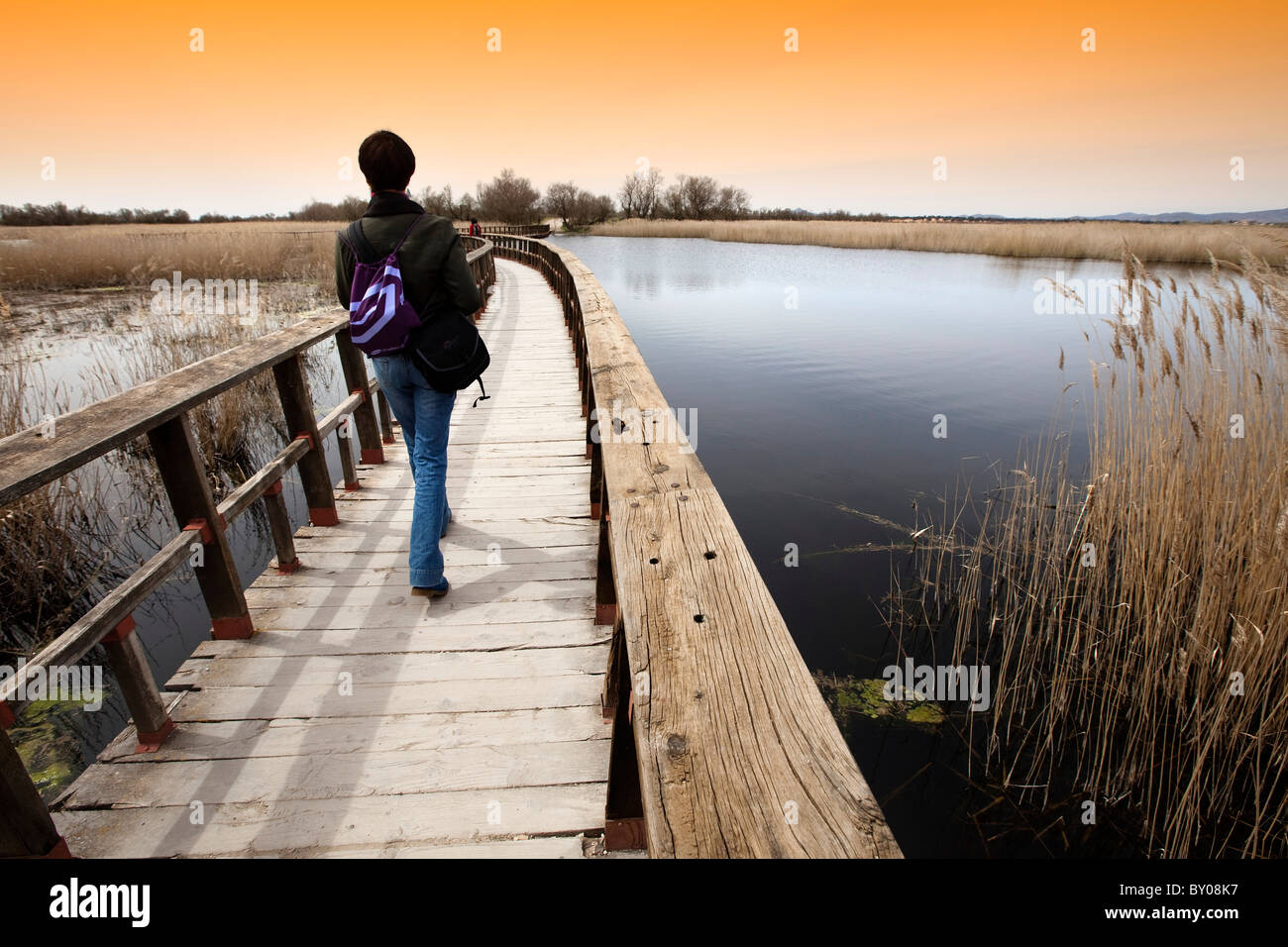 Parque Nacional de Las Tablas de Daimiel Ciudad Real Castilla la Mancha España National Park Spain - Stock Image