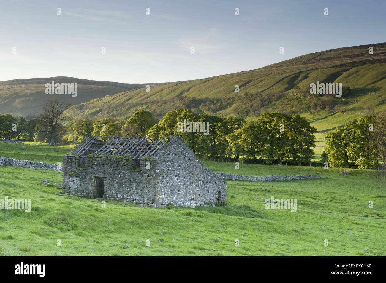 Isolated old stone field barn ruin, scenic hillside valley slope, farmland & sunlit upland hills - Arncliffe, Littondale, Yorkshire Dales, England, UK Stock Photo