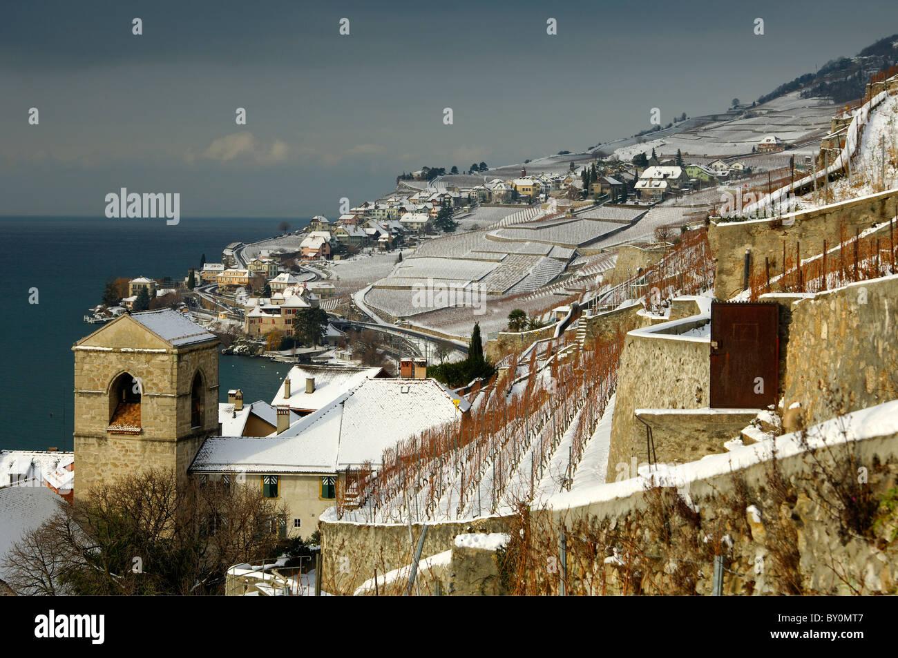 Snow-covered vineyards along Lake Geneva, Lac Leman, in the UNESCO World Heritage site Lavaux, Saint-Saphorin, Switzerland - Stock Image