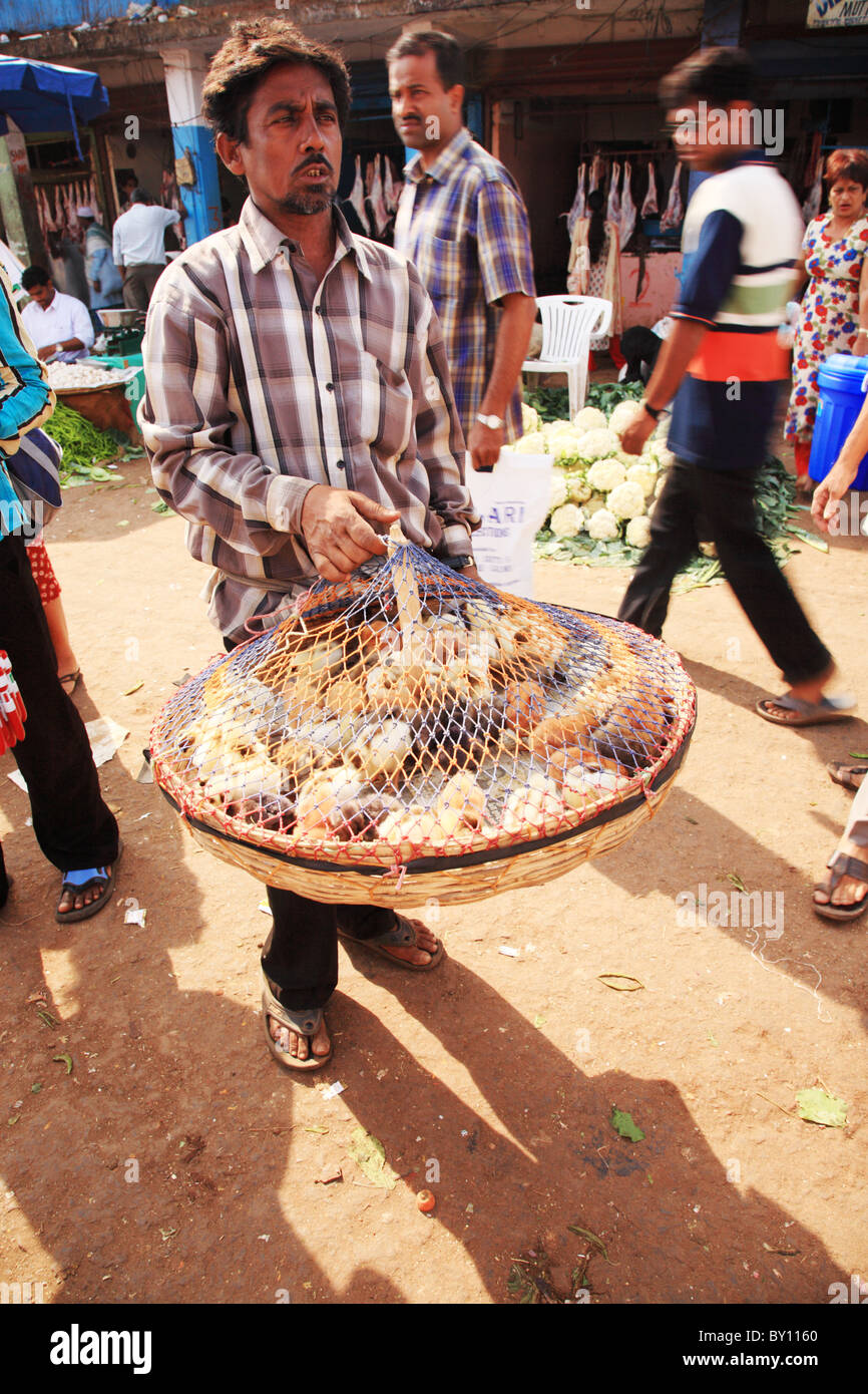 Man carrying a basket of baby chickens through a street market in Goa India 25 January 2008 - Stock Image