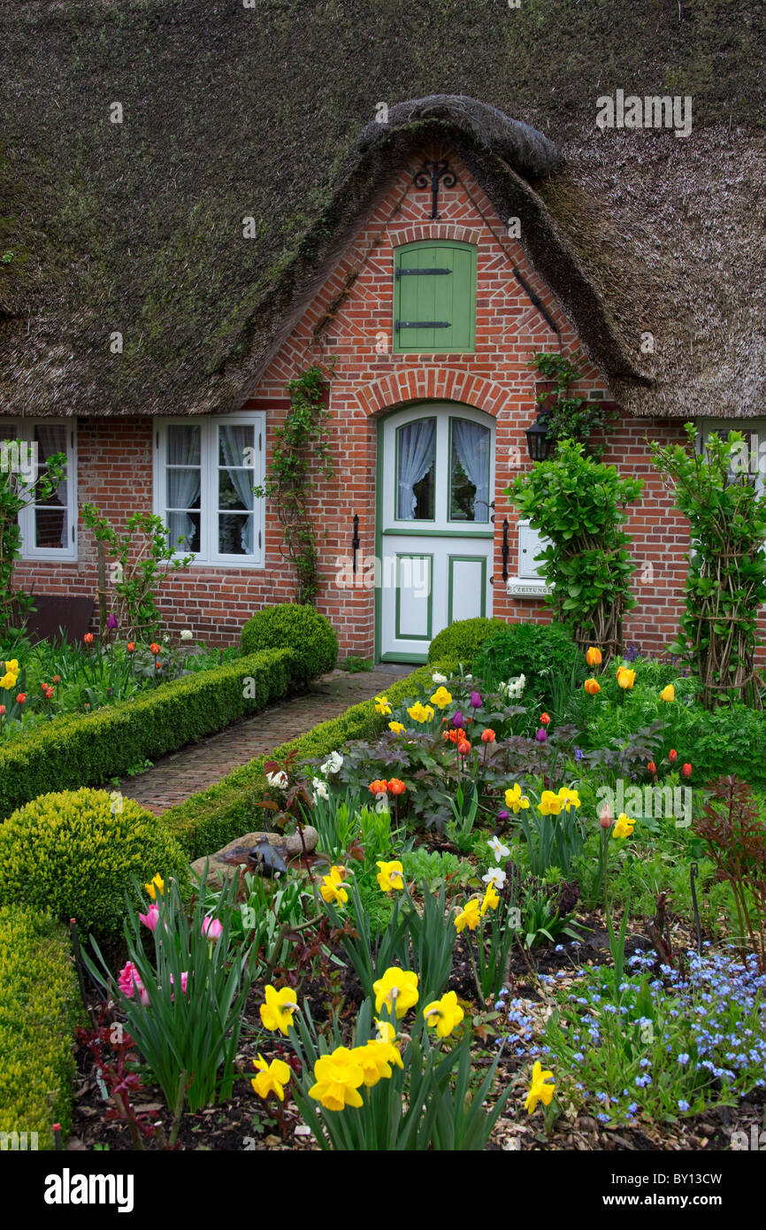 Colourful flowers in garden of Frisian traditional house with straw-thatched roof at Sankt Peter-Ording, North Frisia, Stock Photo