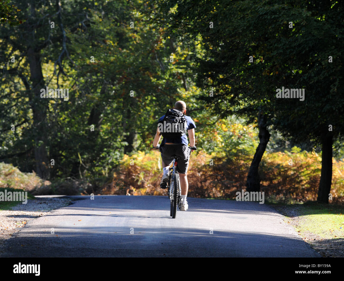 A cyclist cycling in beautiful countryside, wild and free with the open road ahead. - Stock Image