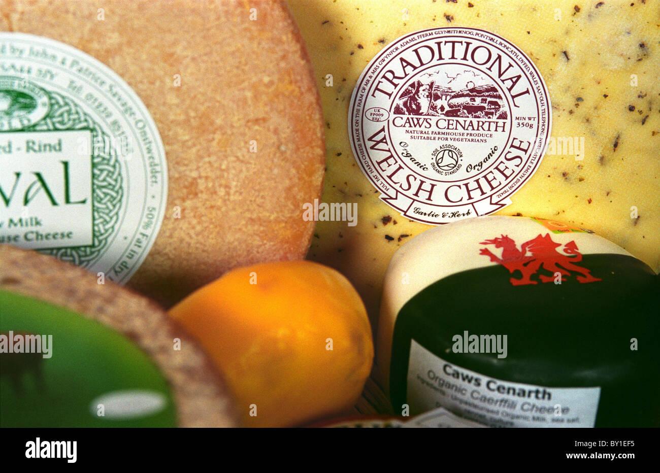 Teifi Cheese. Stock Photo