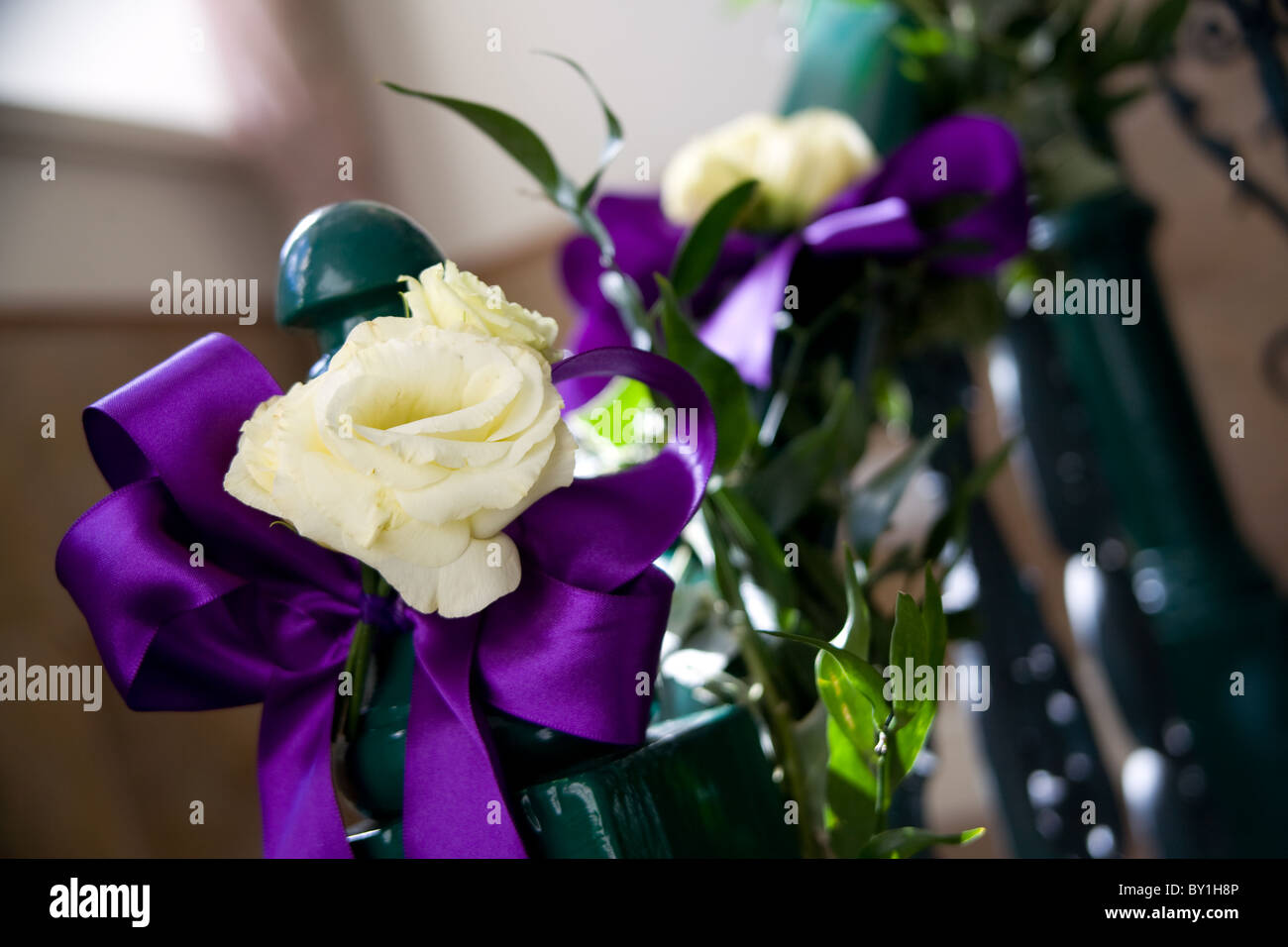 cream roses with purple ribbon on stair banister - Stock Image