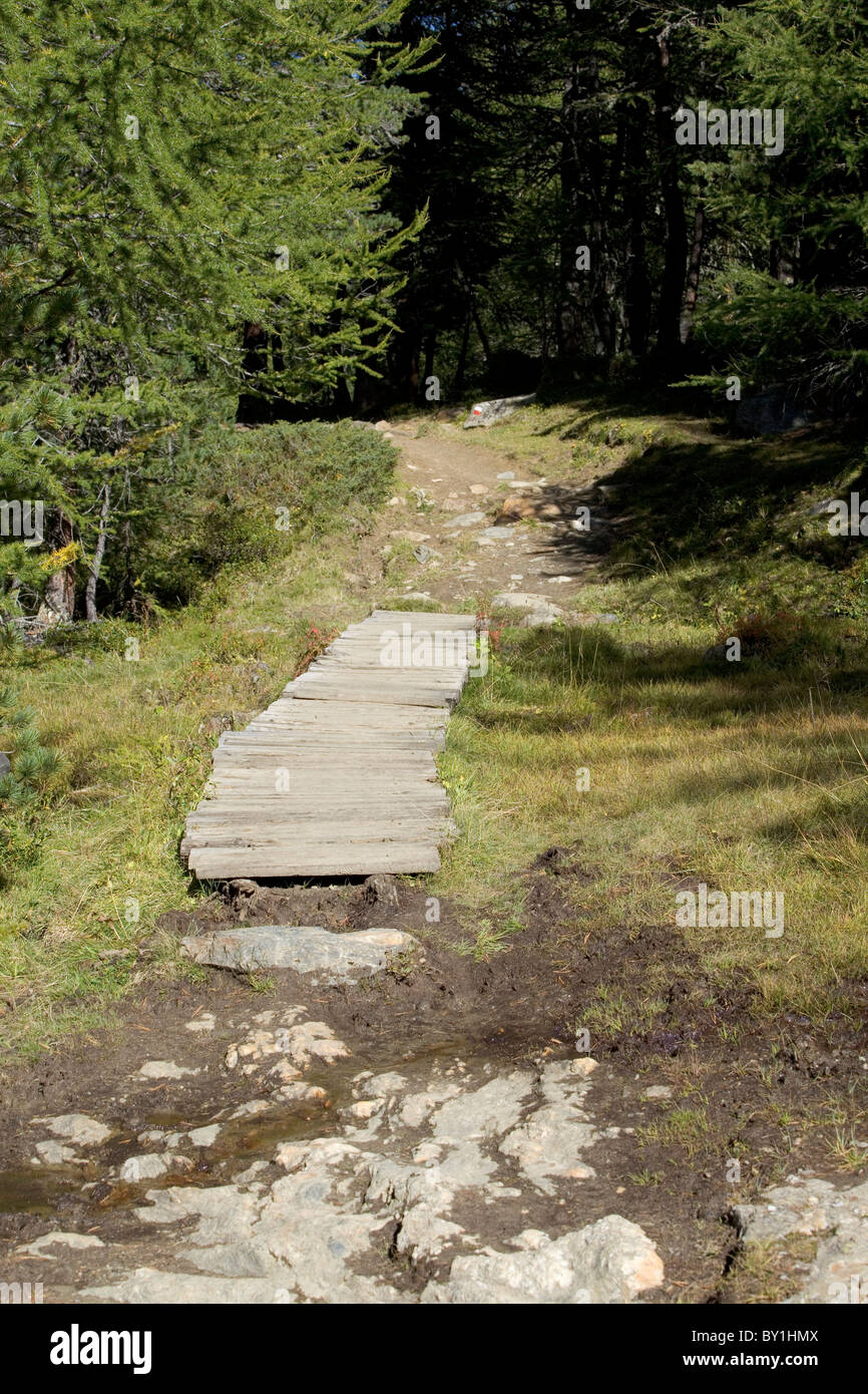 Wooden Walkway Across Boggy Ground Mountain Footpath In The Valley