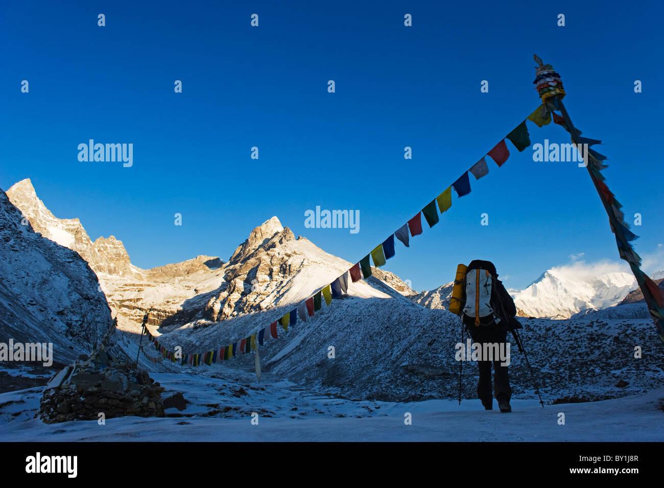 Asia, Nepal, Himalayas, Sagarmatha National Park, Solu Khumbu Everest Region, Unesco World Heritage, Machherma, - Stock Image