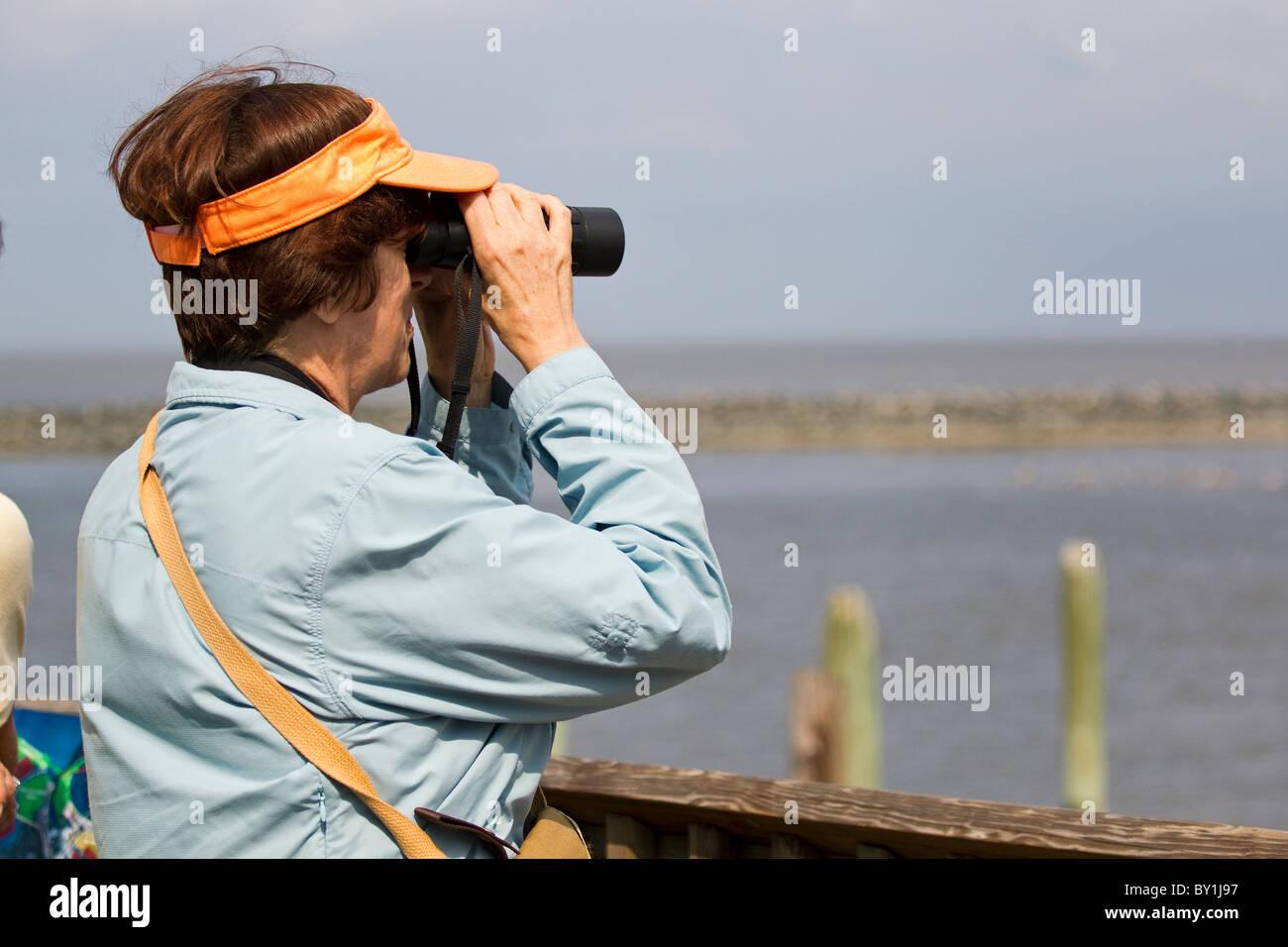 Senior female birdwatcher looking through binoculars at shore birds on shoreline - Stock Image