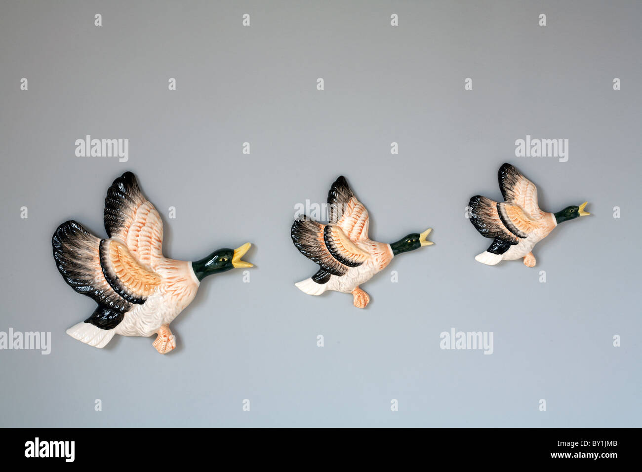 Flying duck ornaments on wall - Stock Image