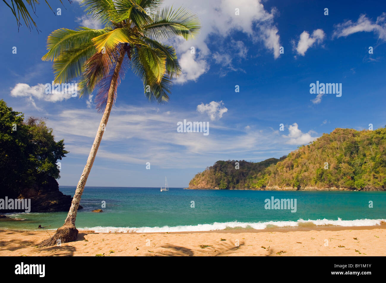 The Caribbean, Trinidad and Tobago, Tobago Island, Englishmans Bay - Stock Image