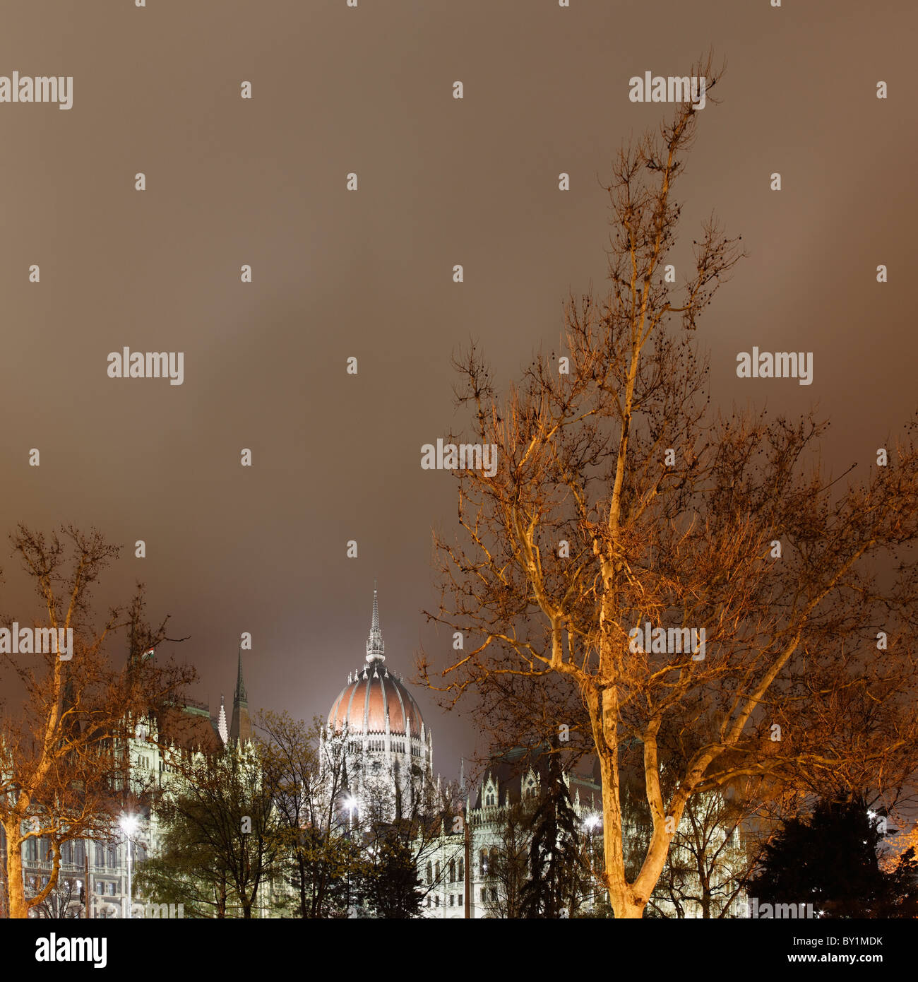 Hungarian Parliament and tree Stock Photo