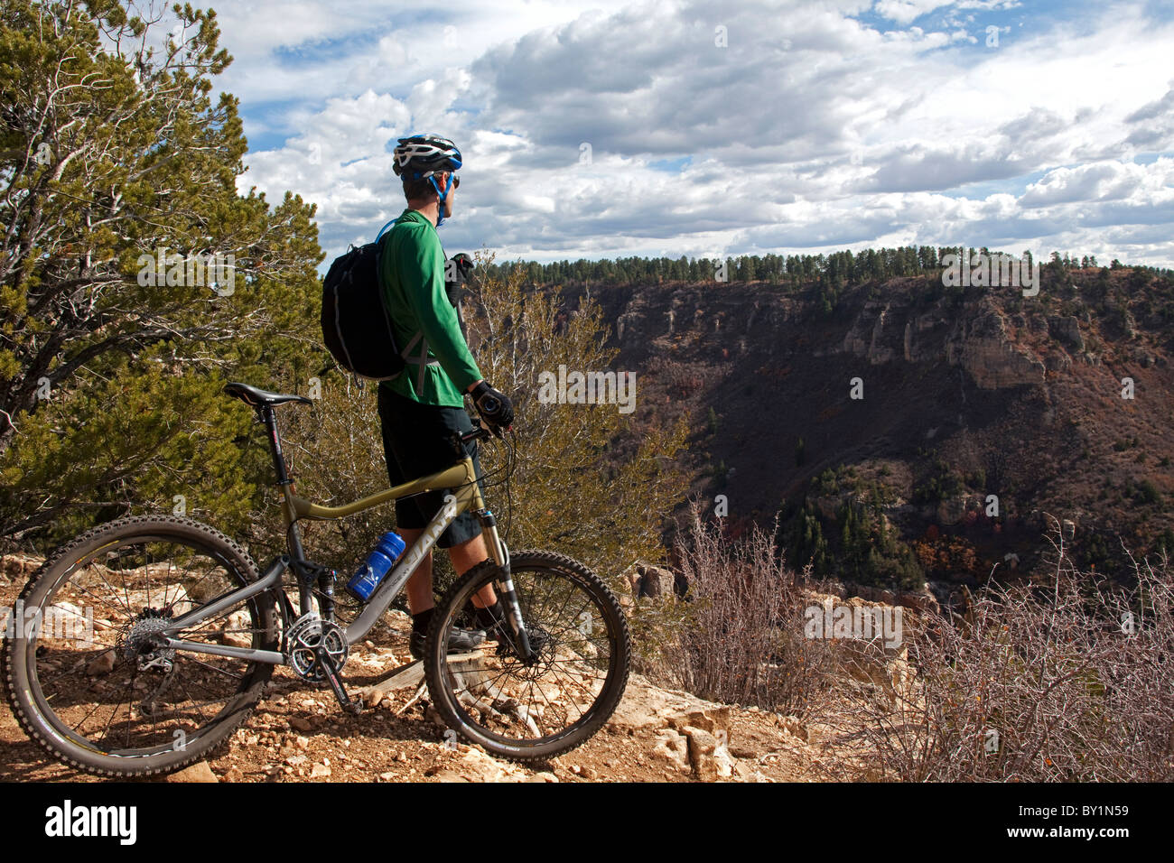 USA, Arizonia, Grand Canyon north rim, Kaibab National Forest.  The vast expanse of national park areas away from - Stock Image