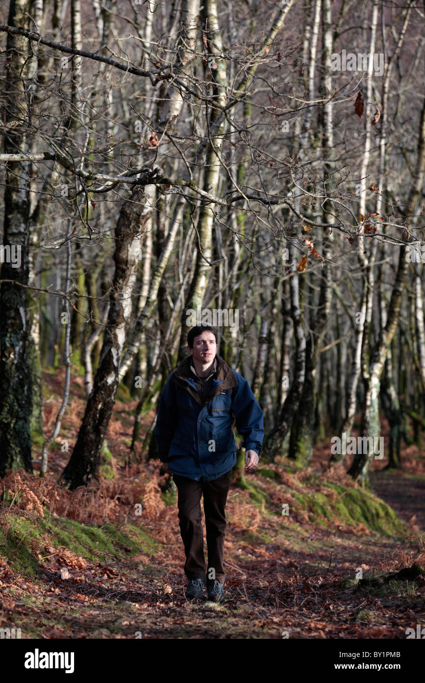 Walking in woods in winter in Wales - Stock Image