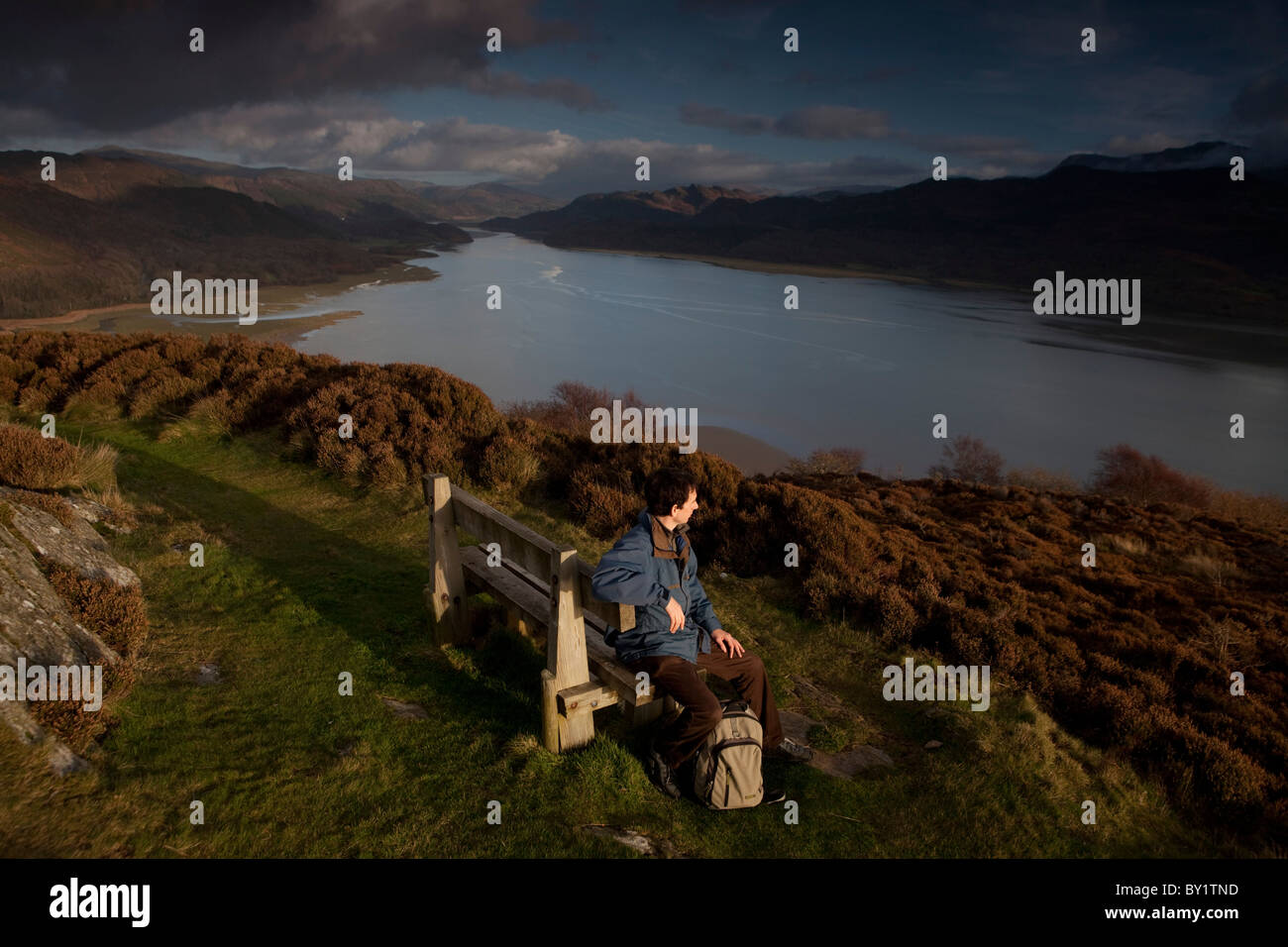 Walker on the Mawddach Way above Barmouth with the River Mawddach below and the mountains of central Wales in the - Stock Image