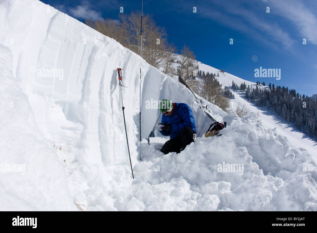 One man recording snow conditions in a snow pit on a blue sky day. - Stock Image