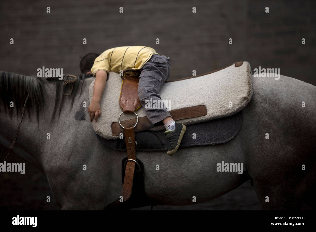 A boy rests on the back of a horse during his horse therapy session in Mexico City - Stock Image