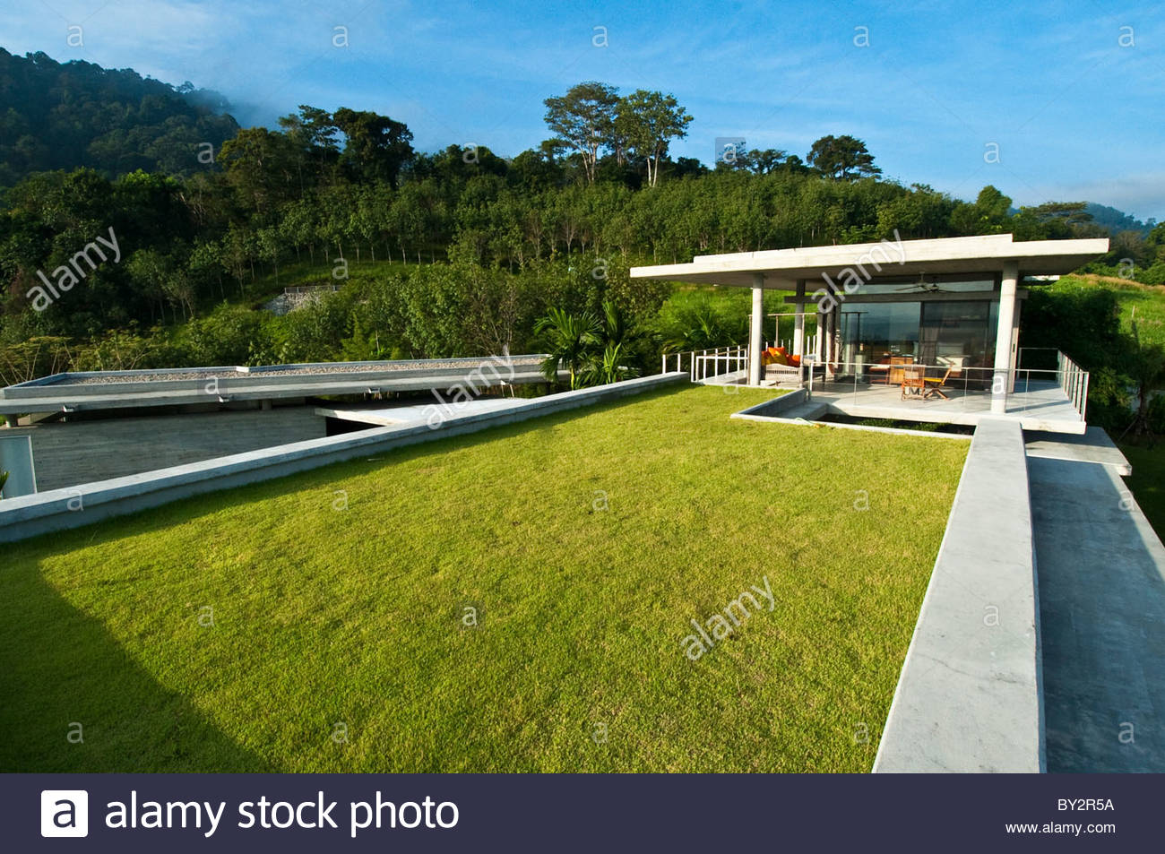 Green Roof - Stock Image