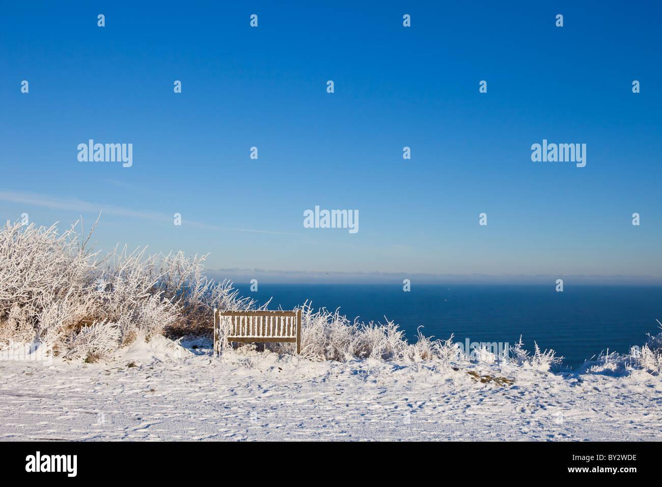 Snow covered scene, winter 2010 Stock Photo