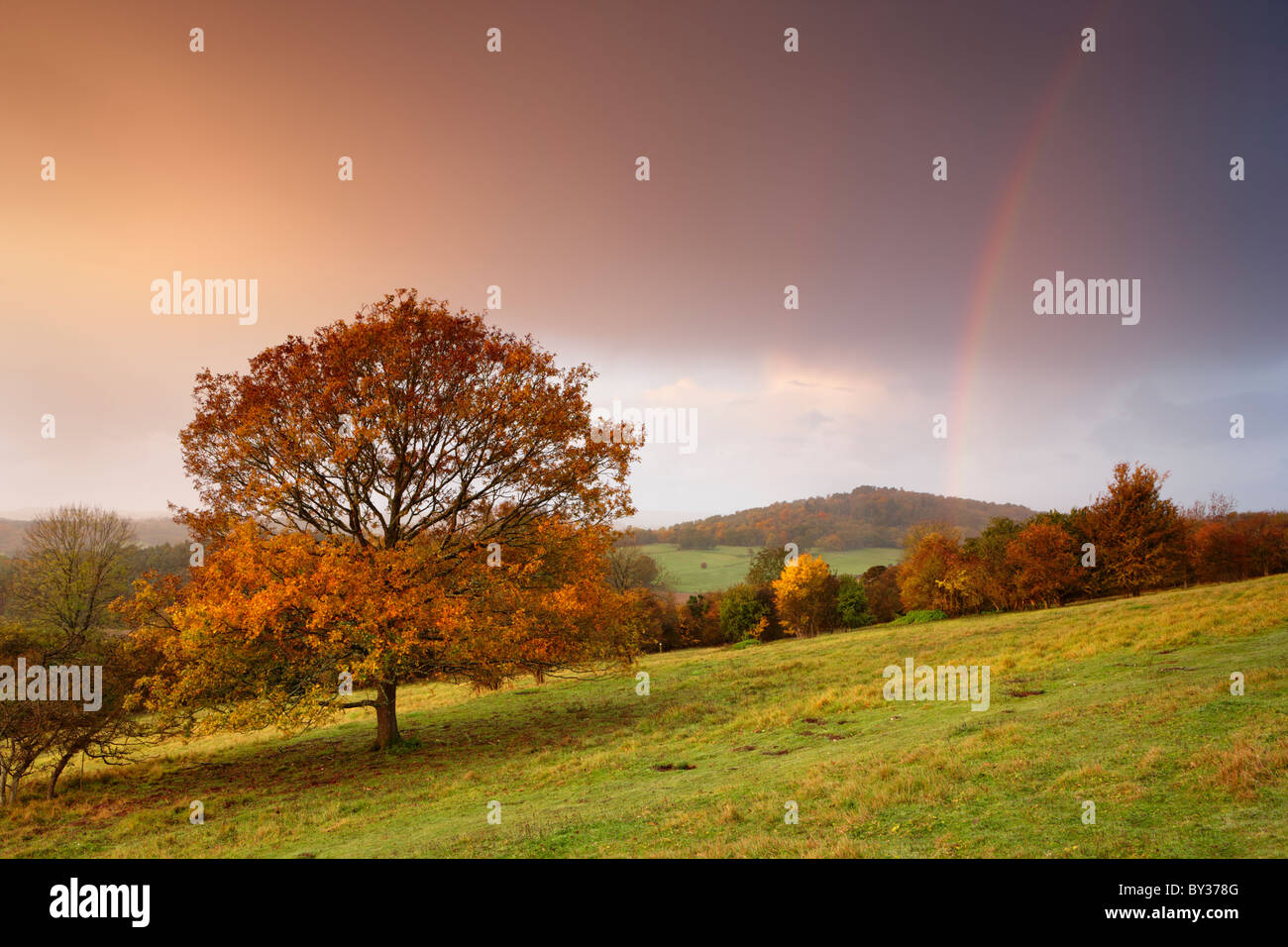 Autumn hues cover the trees, the sky fills with colour from the rising sun as rain showers pass overhead and create - Stock Image