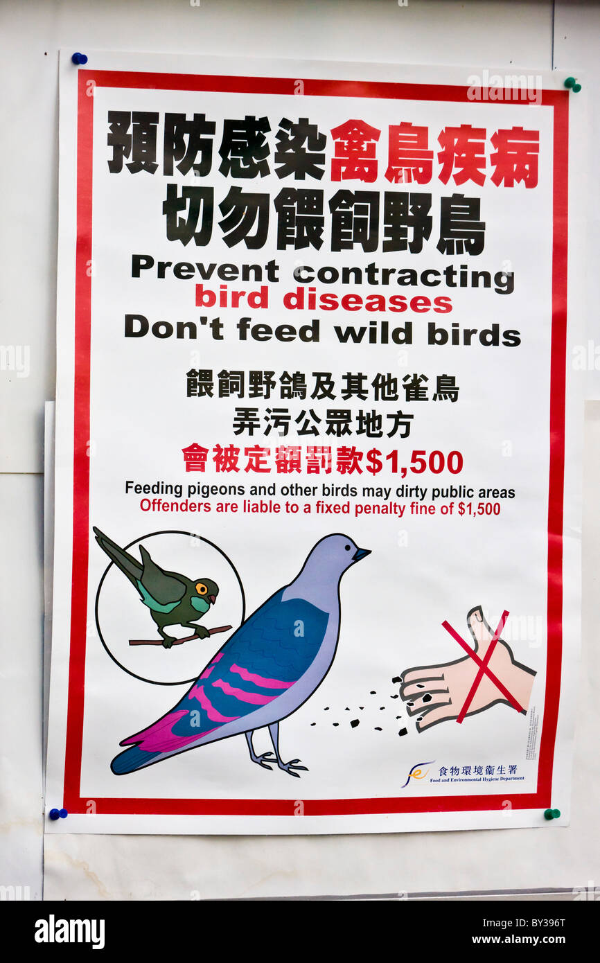 'Prevent contracting bird diseases' poster in the Bird Market, Yuen Po Street, Nathan Road, Kowloon, Hong - Stock Image