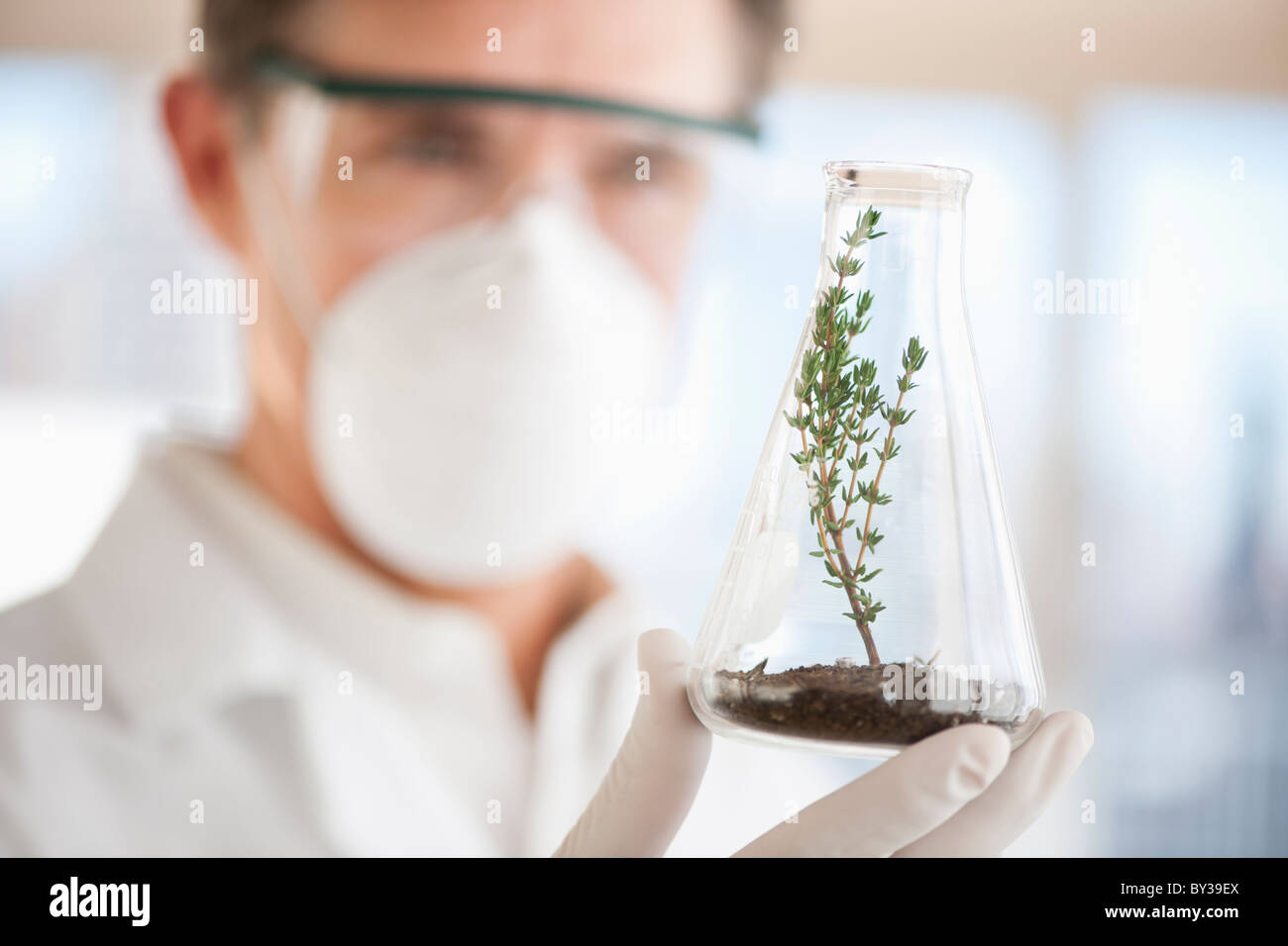USA, New Jersey, Jersey City, Botanic laboratory - Stock Image