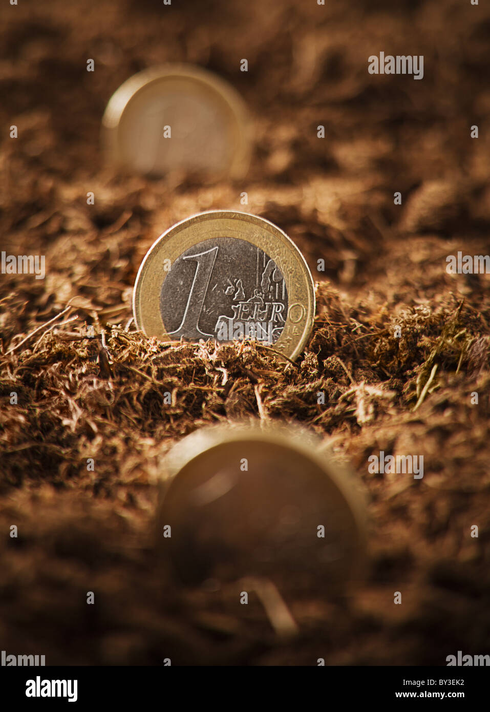 One Euro coins stuck in ground, close-up - Stock Image