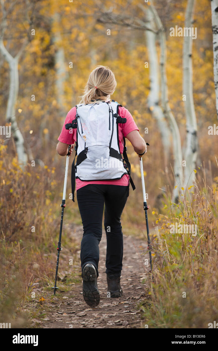 USA, Utah, young woman hiking in forest, rear view - Stock Image