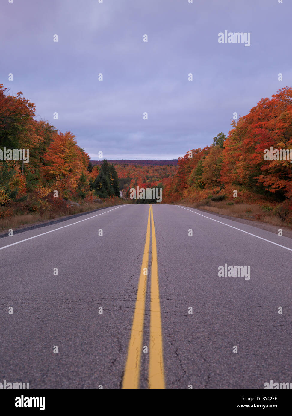 Highway going through beautiful colorful fall nature scenery. Algonquin Provincial Park, Ontario, Canada. - Stock Image