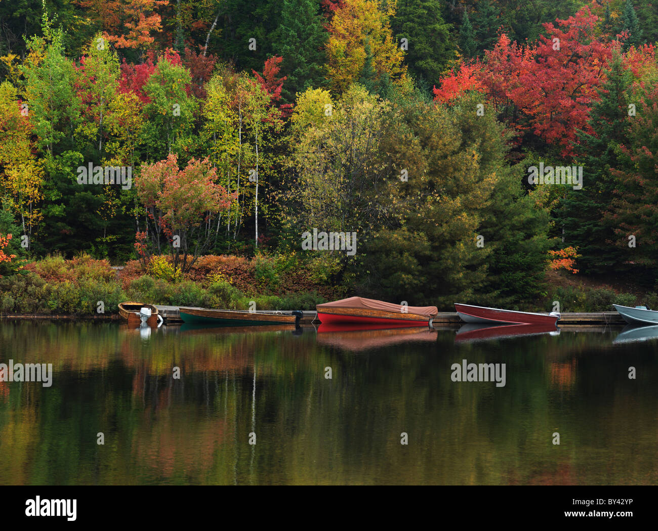 Docked boats at Canoe lake. Fall nature scenery. Algonquin Provincial Park, Ontario, Canada. - Stock Image