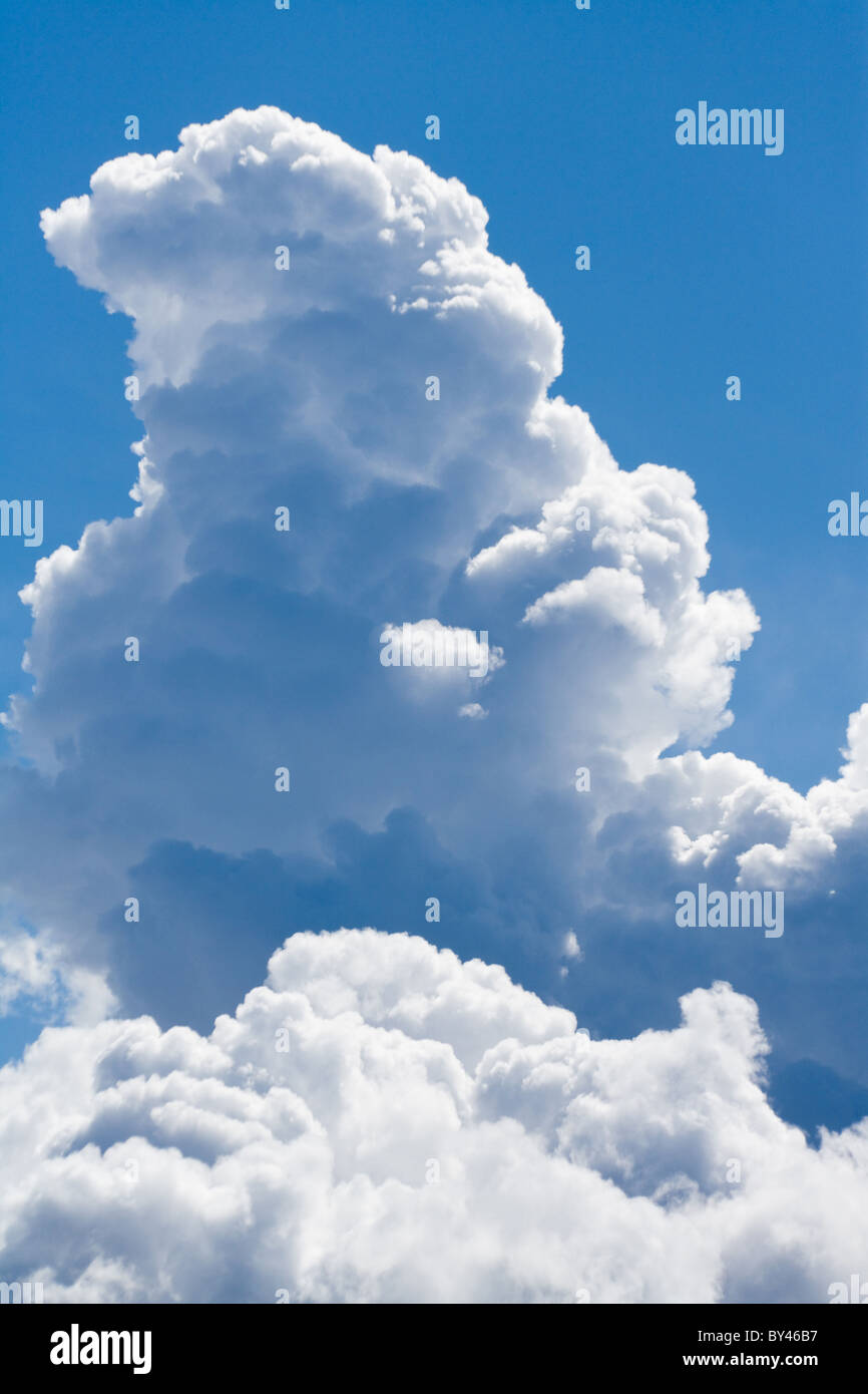 Cloud and blue sky for background - Stock Image