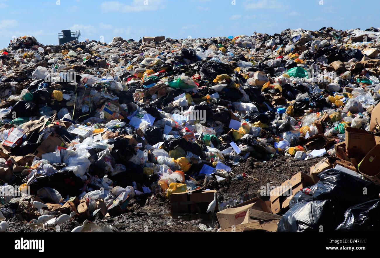 Refuse Dump - Stock Image