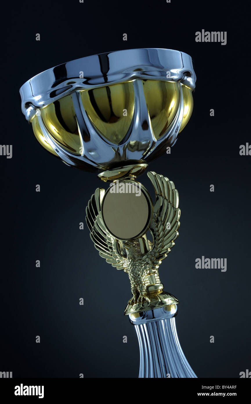 Classic gold trophy cup on wood pedestal with engraved inscription 1st Place - Stock Image