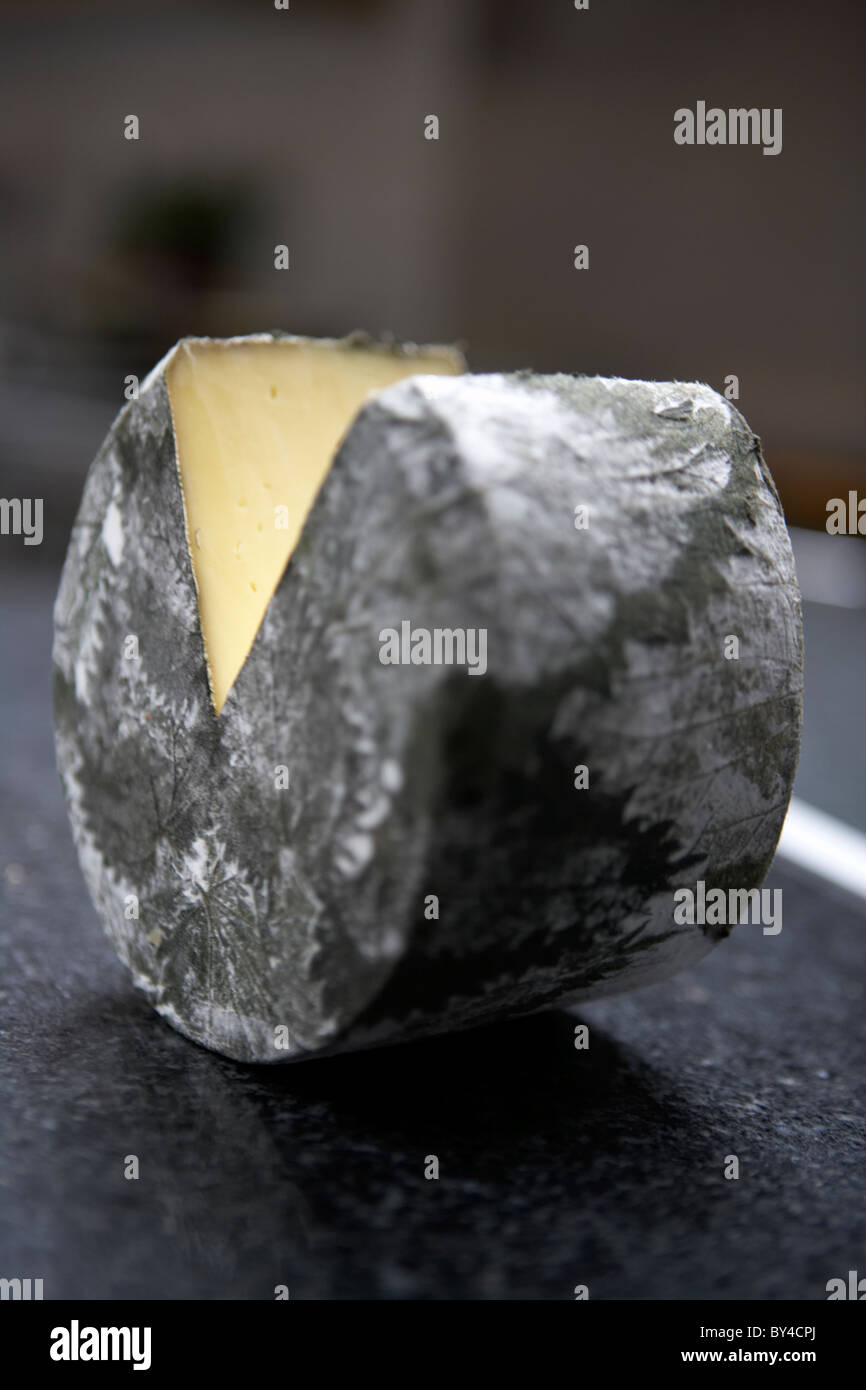 Cornish Nettle Yarg Cheese - Stock Image