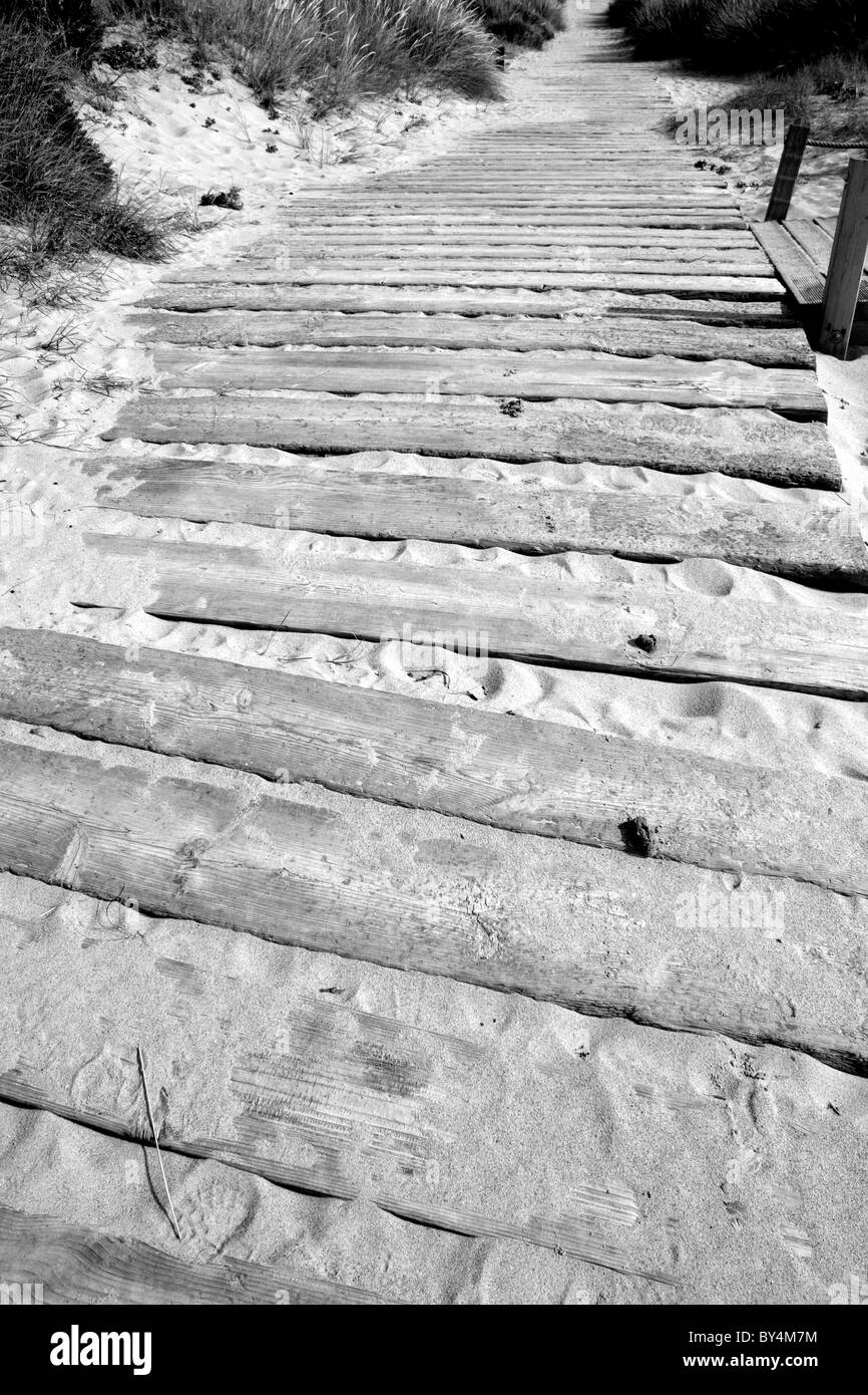 A long winding pathway made by panels and planks of wood in the sand leading a long way in to the distance - Stock Image