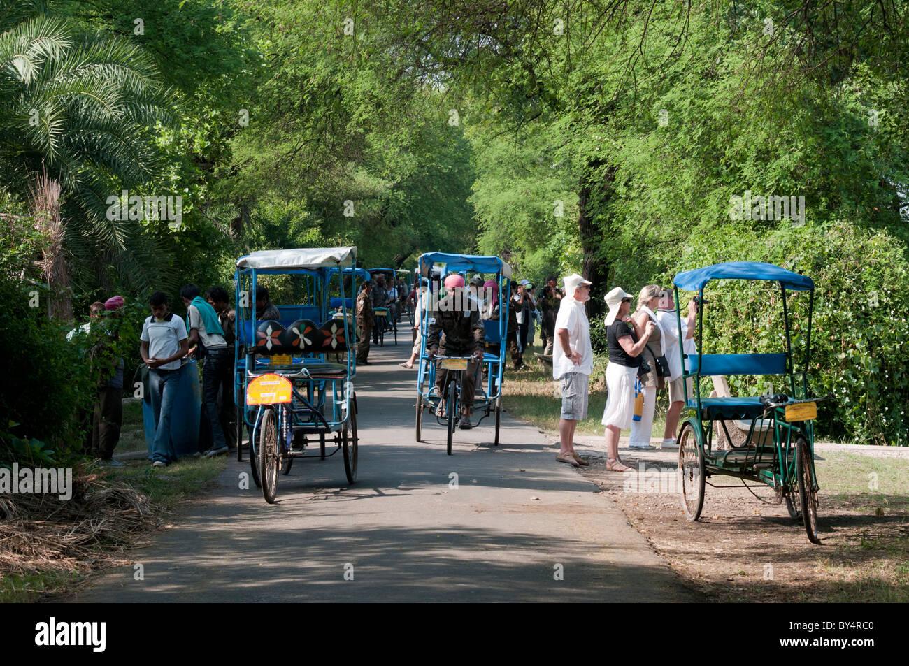 Cycle Rickshaws at Bharatpur National Park - Stock Image