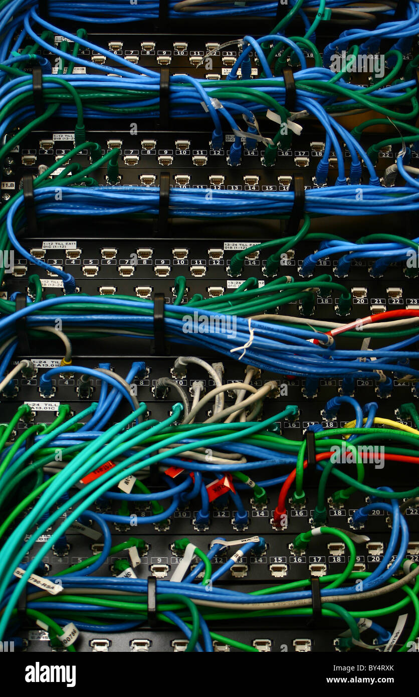 Ethernet cables in many colours Stock Photo: 33912667 - Alamy on